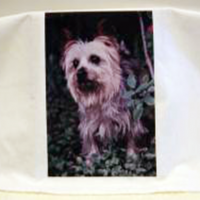 Personalised Photo Tea Towel