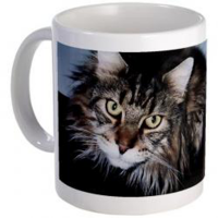 Personalised Cat Photo Mug