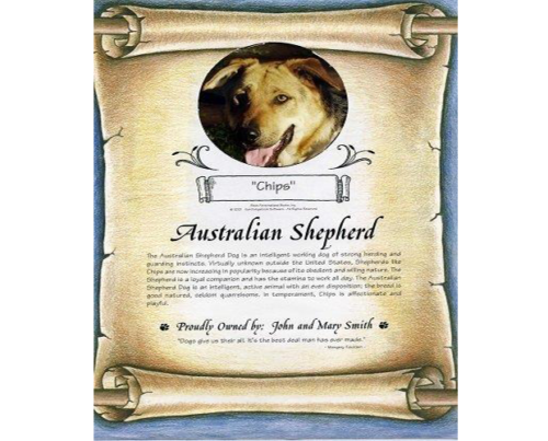 Personalised Dog Certificate