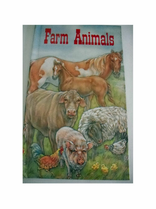 Personalised Book Farm Animals Birthday gift for kids and a free Name  Meaning