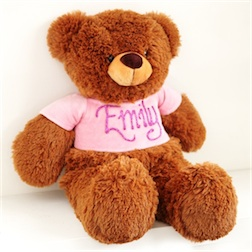 personalised-teddy-bear-pink-3-lg
