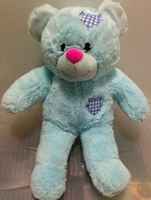 Recordable Teddy Bear Blue