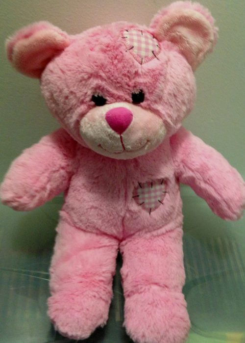 Recordable Teddy Bear Pink
