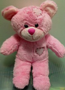personalised recordable teddy