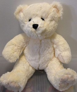 recordable message teddy bear