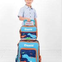 boys personalised luggage set