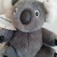 Personalised T-Shirt Koala